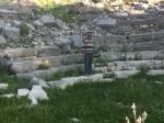 amphitheatre 2