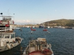 Datca harbour