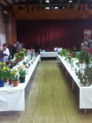 It was so quaint and sweet with a flower and veg competition and  a very delicious cake contest.